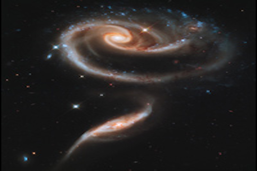 HubbleRoseMadeOfGalaxieshs-2011-11-a-small_web copy